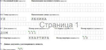 Образец формы для регистрации ИП. Лист 2