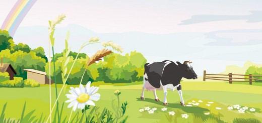 6 идей доходного бизнеса в сельской местности