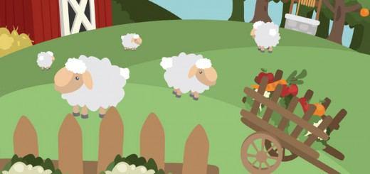 Овцеводство как бизнес для начинающего фермера