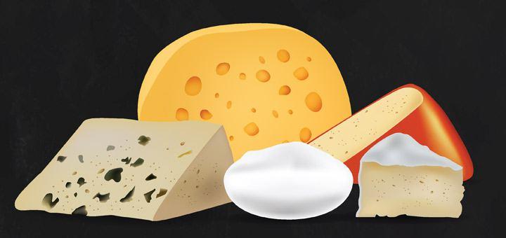 Организация сбыта продукции сыроварения