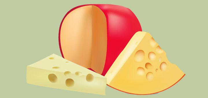 Производство сыра как бизнес, как открыть мини цех по сыроварению