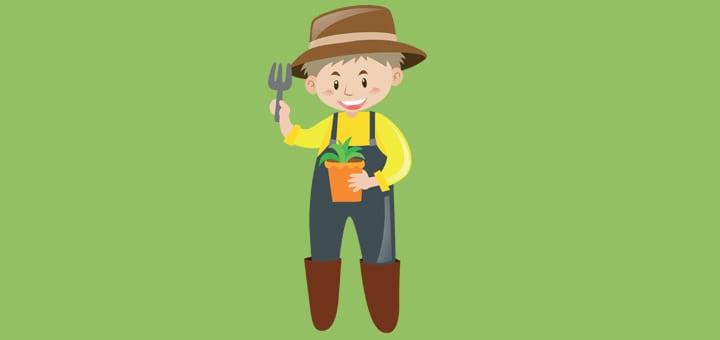 С чего начать бизнес по выращиванию огурцов