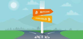 Криптовалюта Bitcoin Gold