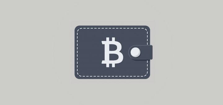 Какие кошельки криптовалют существуют?