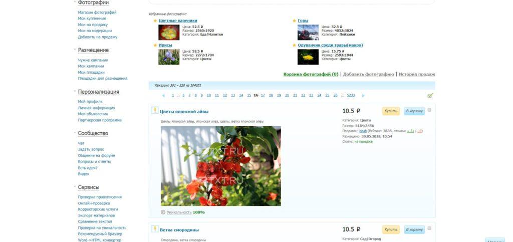 Раздел сайта биржи контента Etxt, посвященный покупке и продаже фотографий