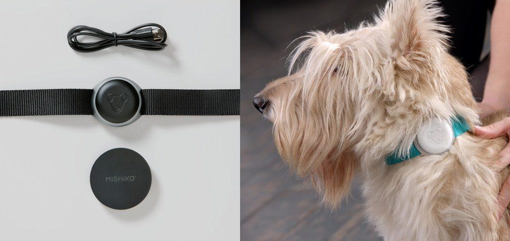 """Рисунок: Успешный Стартап по созданию умного GPS ошейника для собак Mishiko, который привлек $1,7 млн и принес совладельцам огромную прибыль"""""""