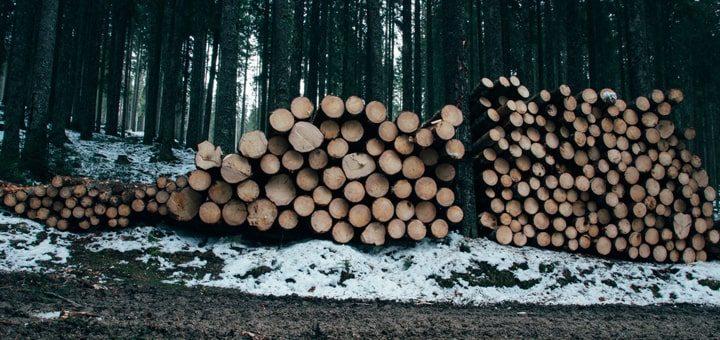 Продажа, колка и доставка дров