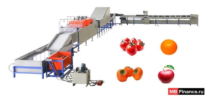Мини завод для обработки овощей и фруктов